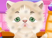 game Cute Pet Salon