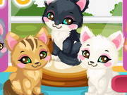 game Kitty Care 2